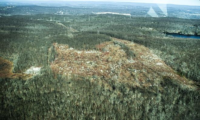 Edison Bog North cut