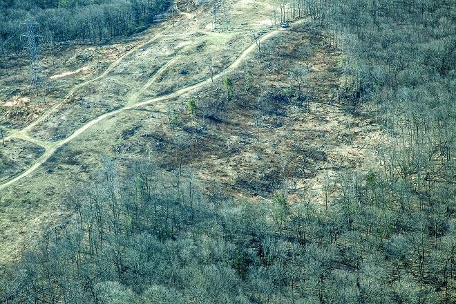 Ridge Road Cut 1